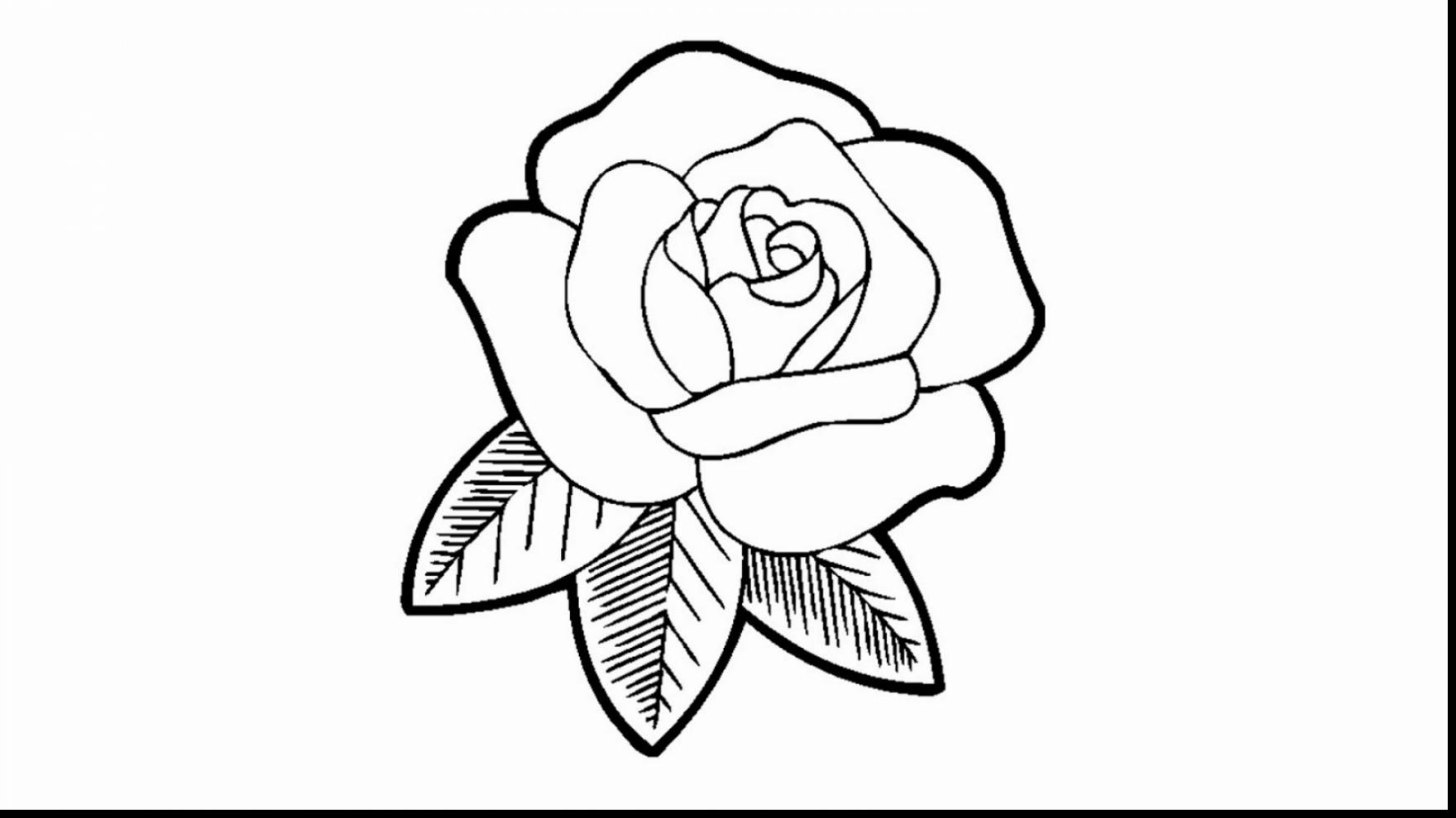 1760x990 Amazing Rose Drawing Coloring Page With Roses Coloring Pages