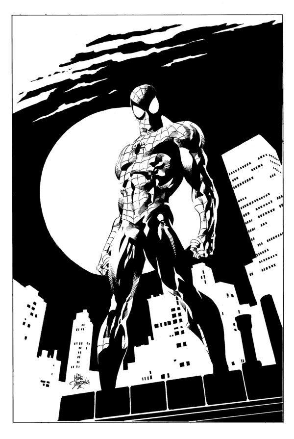 Amazing Spider Man Drawing