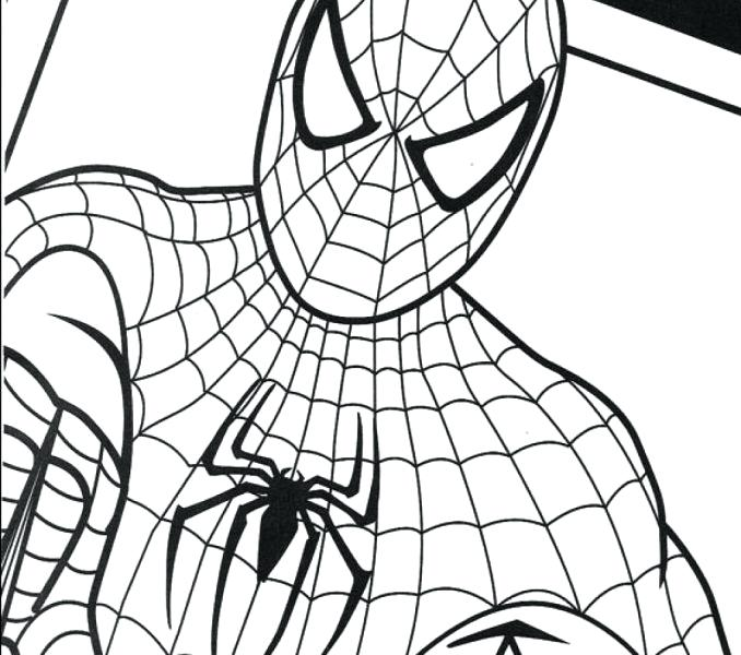Amazing Spider Man Drawing at GetDrawings | Free download