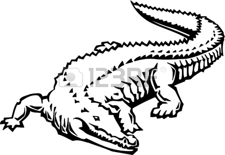 450x309 Crocodile Hunting Fish On The Water Royalty Free Cliparts, Vectors