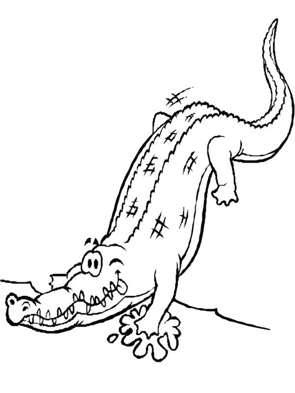 600x800 Cute Alligator Coloring Pages Alligators Page Free Com With Snap