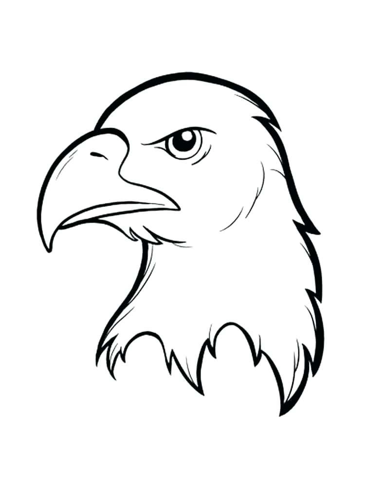 750x1000 Bald Eagle Coloring Pages Eagle Color Page Bald Eagle Coloring