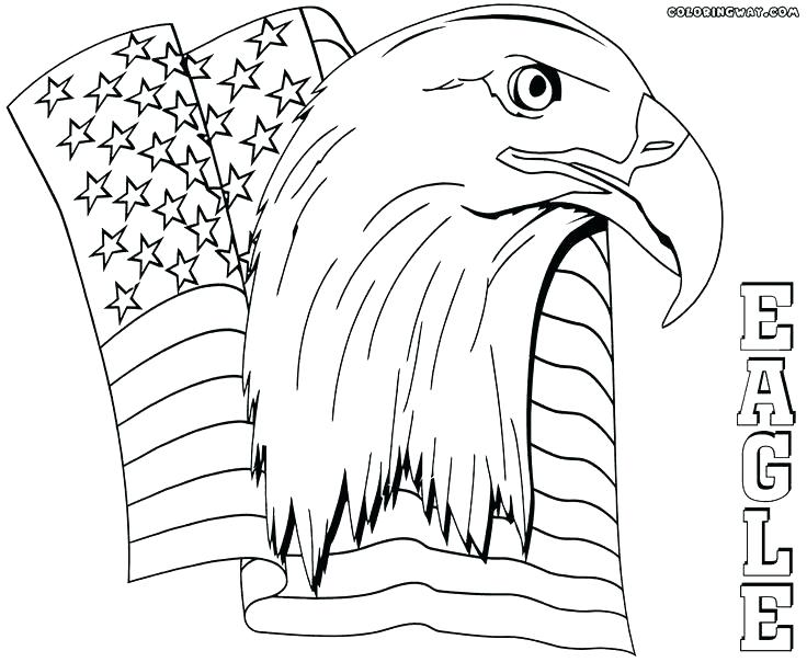 736x604 bald eagle coloring pages eagle coloring pages eagle coloring