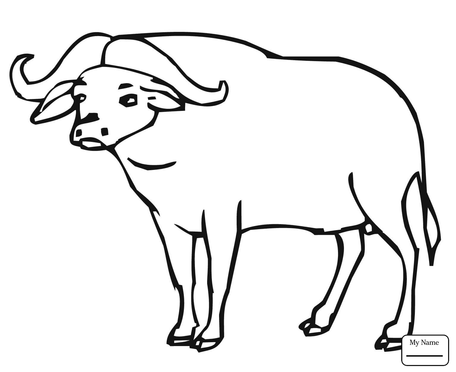 1530x1248 Mammals Realistic American Bison Buffalo Coloring Pages For Kids