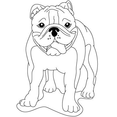 400x400 How To Draw Easy Bulldog Drawings Zentangle
