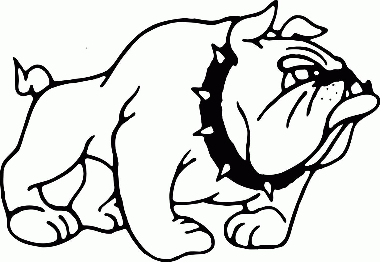 1231x848 American Bulldog Coloring Pages Coloring Pages