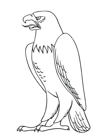 360x480 Bald Eagle Coloring Page Free Printable Coloring Pages