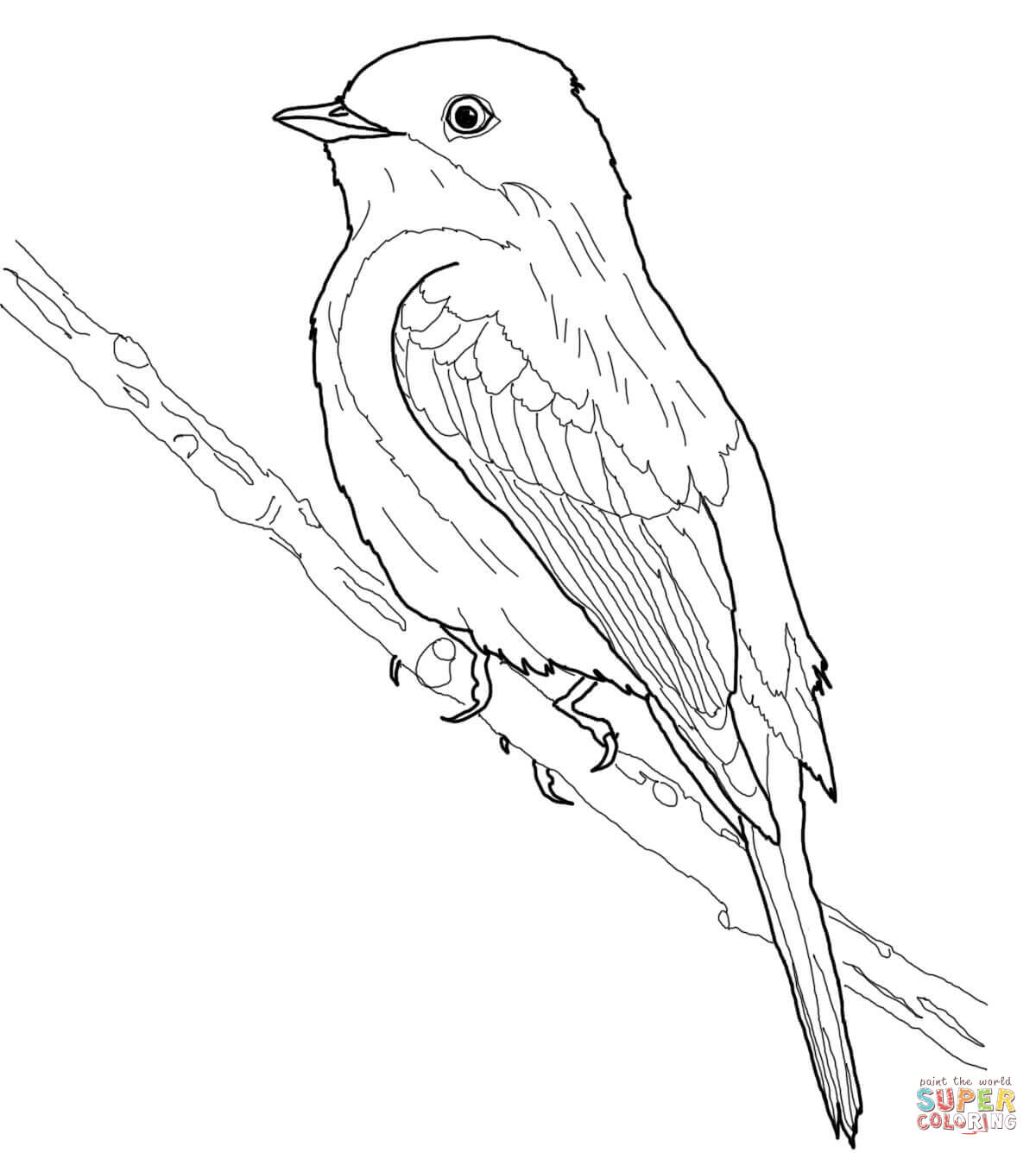 American Goldfinch Drawing at GetDrawings Free for
