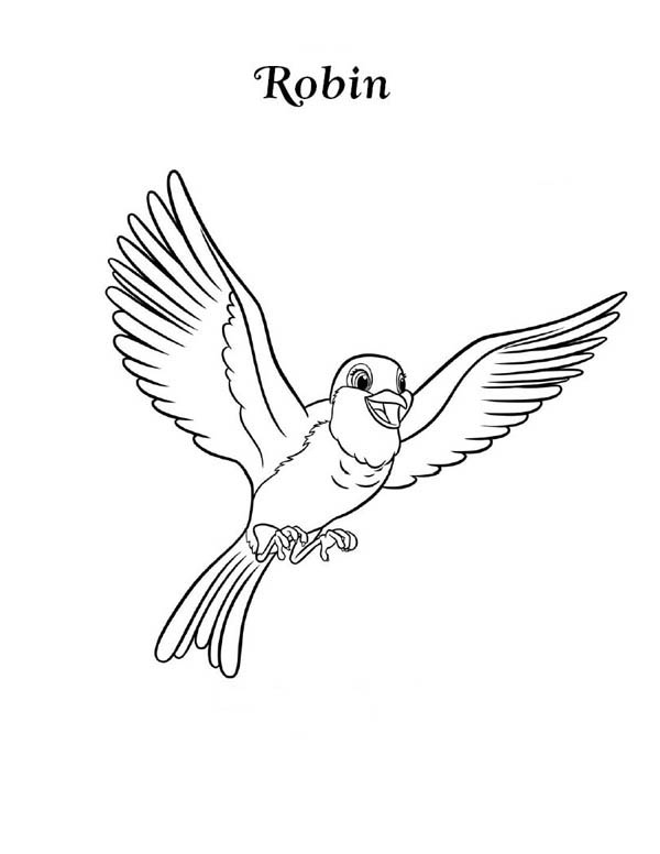 Robin bird coloring pages for kids ~ American Robin Drawing at GetDrawings.com | Free for ...
