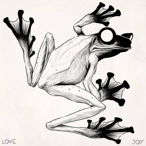 500x500 Amphibian Drawing Tumblr
