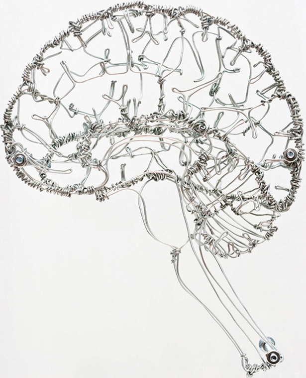 615x759 Federico Carbajal's Beautiful Wire Art Based On Human Anatomy