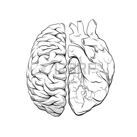 450x450 Human Brain Right And Left Hemisphere Illustration. Hand Drawn