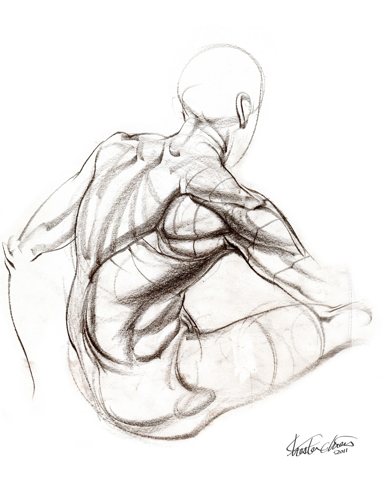 1277x1600 These Anatomy Studies Were From The Drawing Workshop In Our