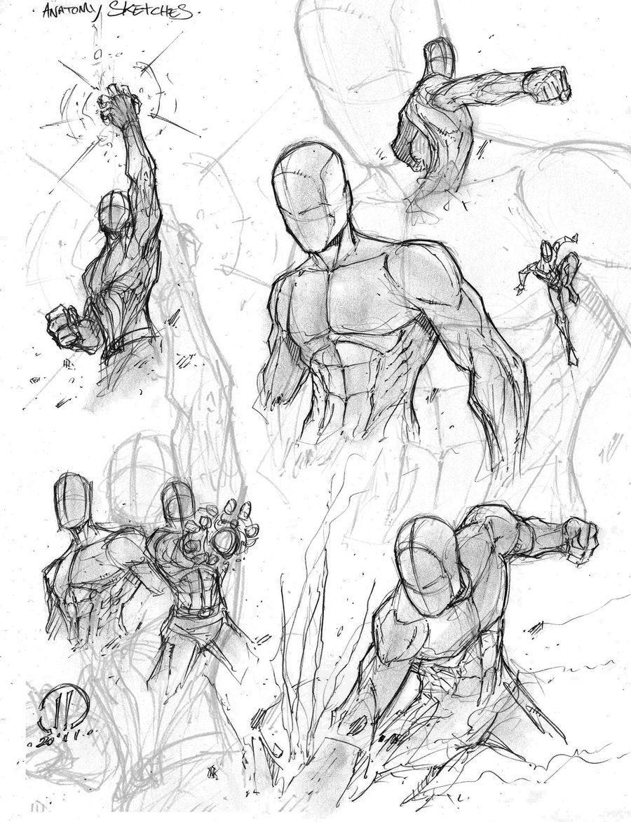 900x1172 Anatomy Warm Ups 2 By On @