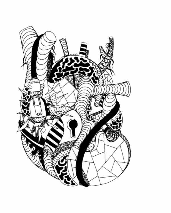 600x750 Anatomical Heart Art Black And White Pictures