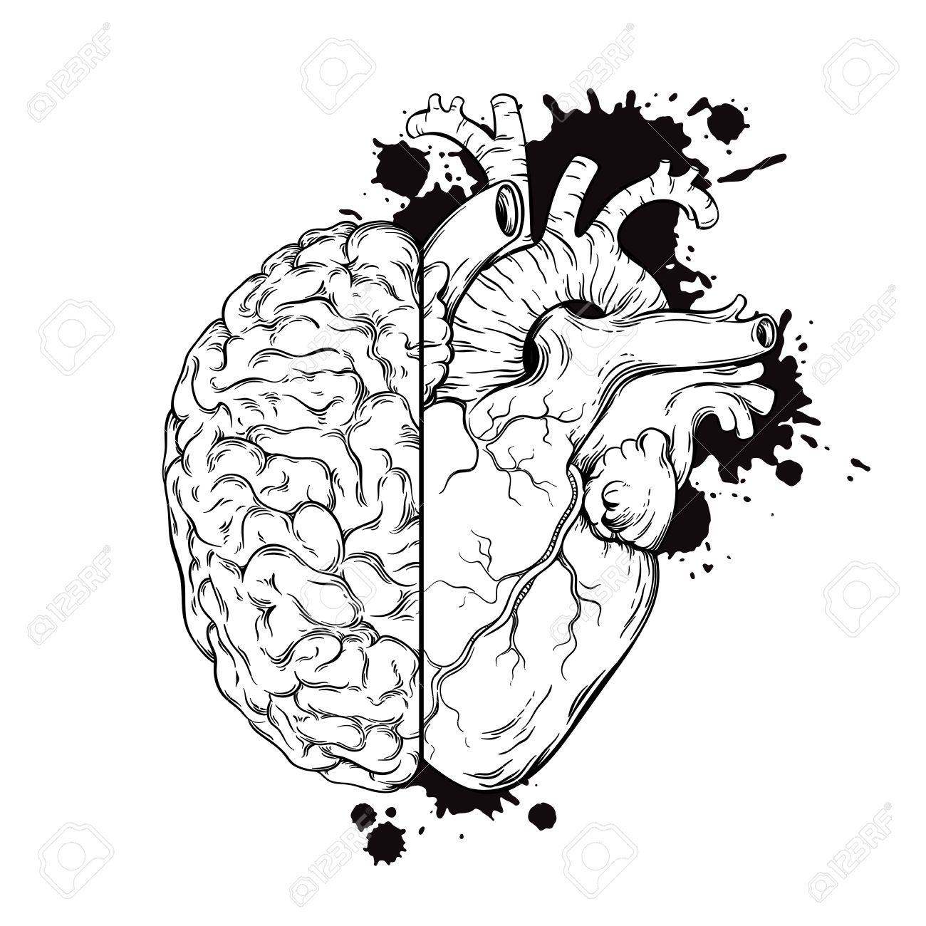 1300x1300 Hand Drawn Line Art Human Brain And Heart Halfs. Grunge Sketch