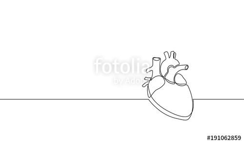 500x292 Single Continuous Line Art Anatomical Human Heart Silhouette