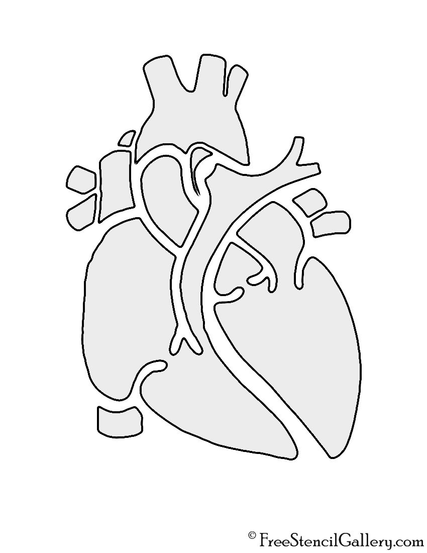 850x1100 Anatomical Heart Stencil Cricut