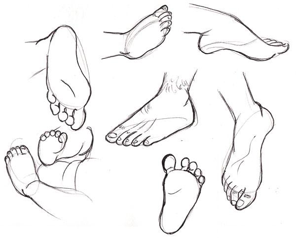 600x483 Human Anatomy Fundamentals How To Draw Feet