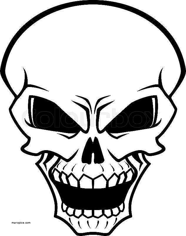 632x800 Human Anatomy Human Anatomy Skeleton Model Unique Danger Skull As