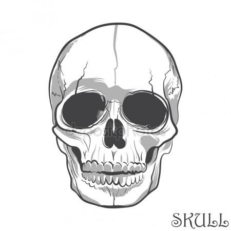 450x450 Human Hand Bones Anatomy Isolated Vector Illustration. Black