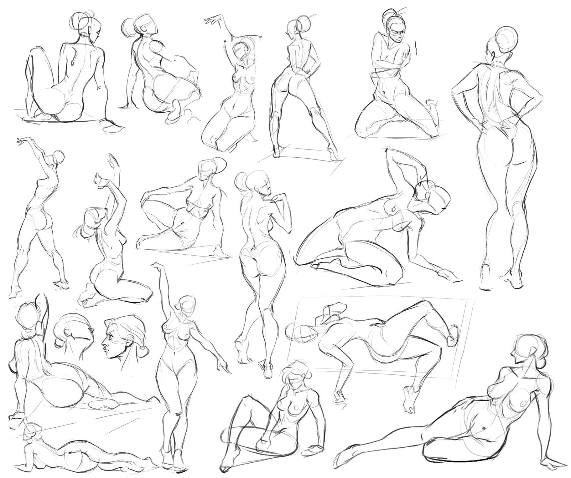 1823x1528 Pin By Heather Feinberg On Drawing Body Anatomy