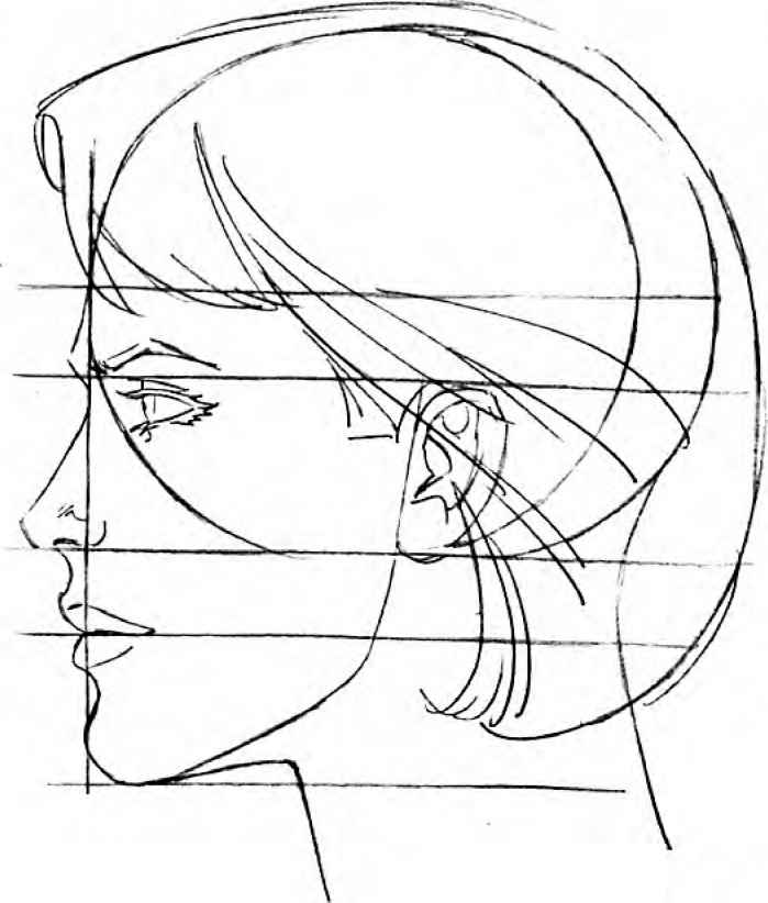 699x822 The Modern Female Head Drawing Comics On X Female Head Bundl