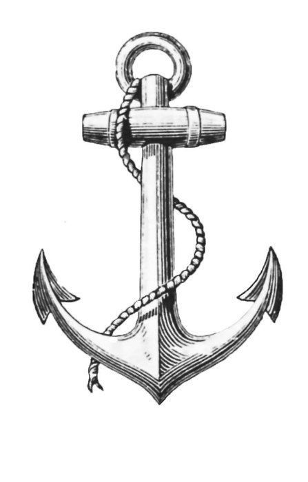 447x700 Image Result For Anchor Drawings Anchors Anchor