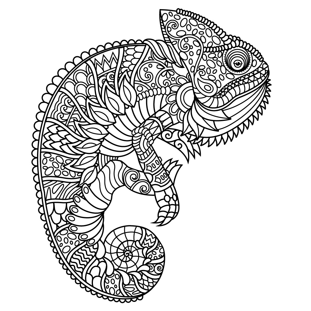 1024x1024 Animal Coloring Pages For Adults For Android, Ios And Windows
