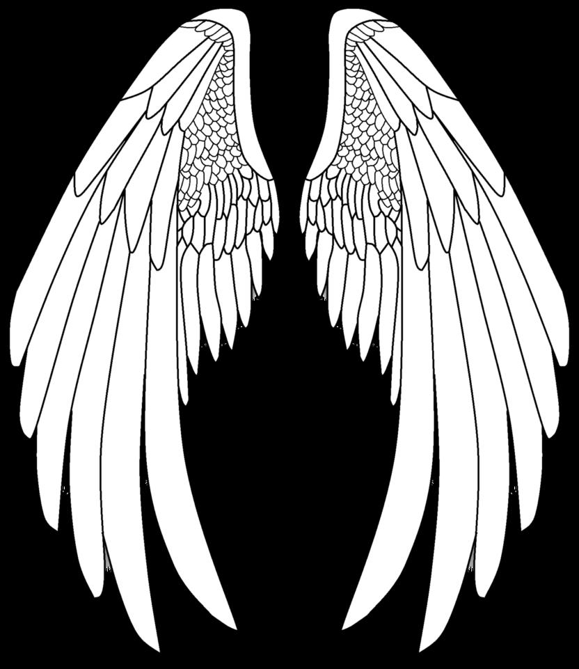 832x961 Pin By Kalnaiorsolya On Rajzok Angel Wings, Angel