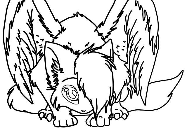 640x480 Cat Angel By Anakonda Problem