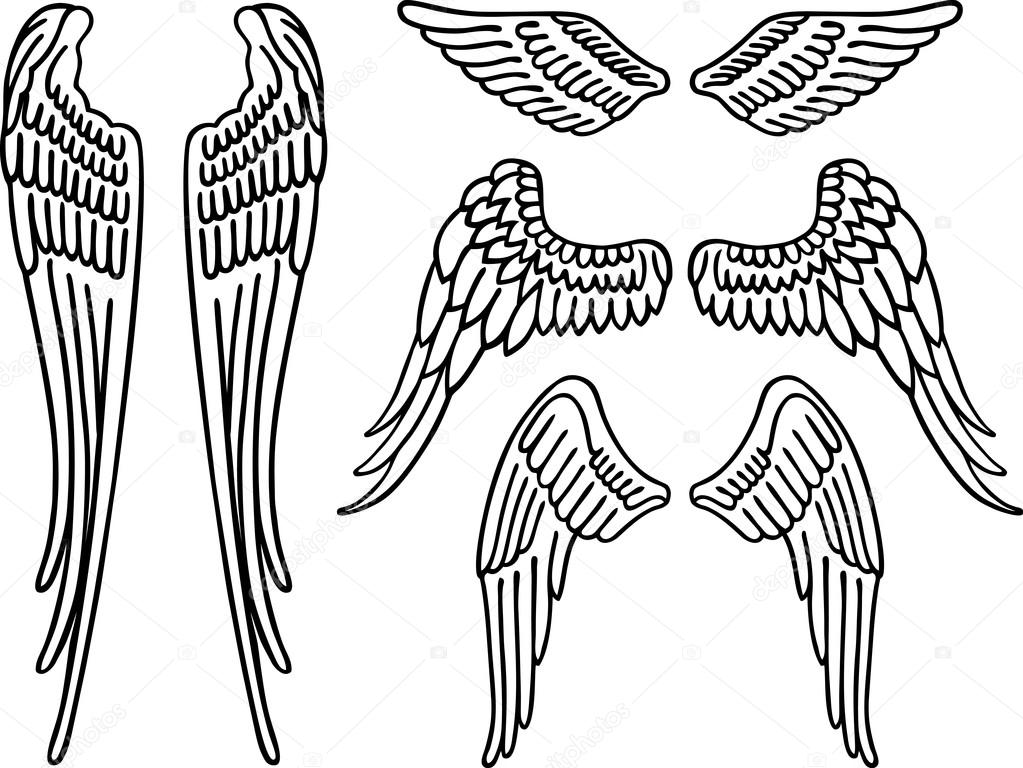 1023x768 Wings Drawing Outline