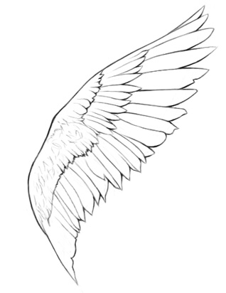 318x412 How To Draw Angel Wings