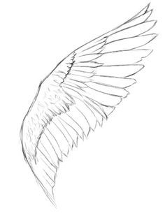 236x305 Pen Amp Ink Drawing Tutorials How To Draw Wings Artsy Tidbits