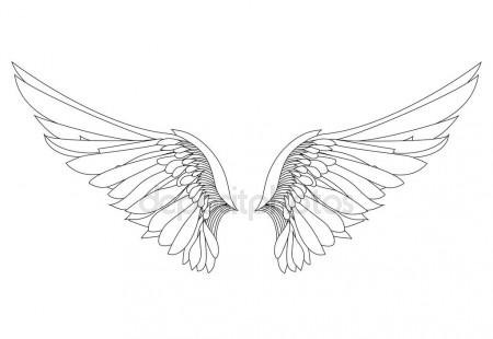 450x310 Wings. Vector Illustration On White Background. Black And White