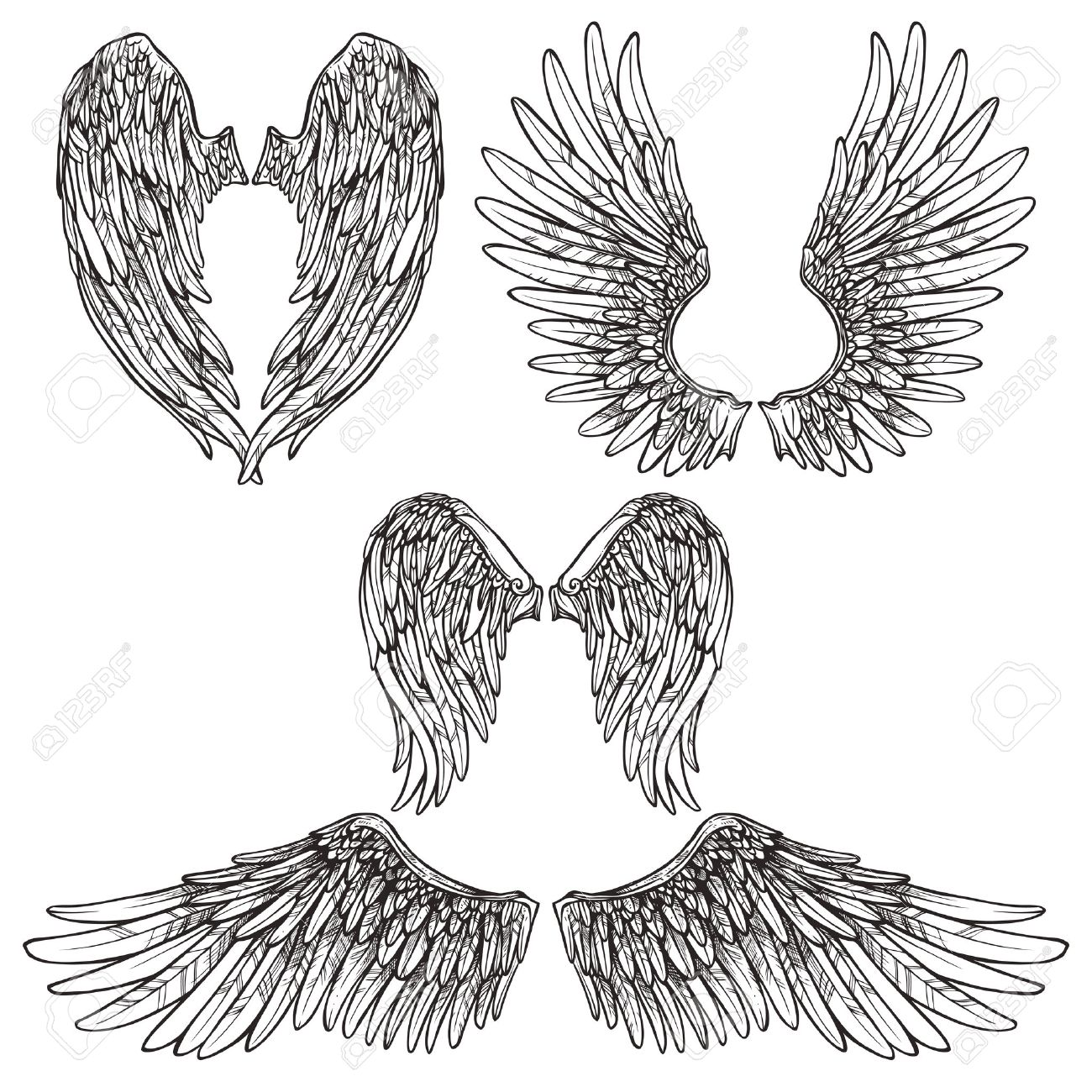 1300x1300 Angel Or Bird Wings Abstract Sketch Set Isolated Vector
