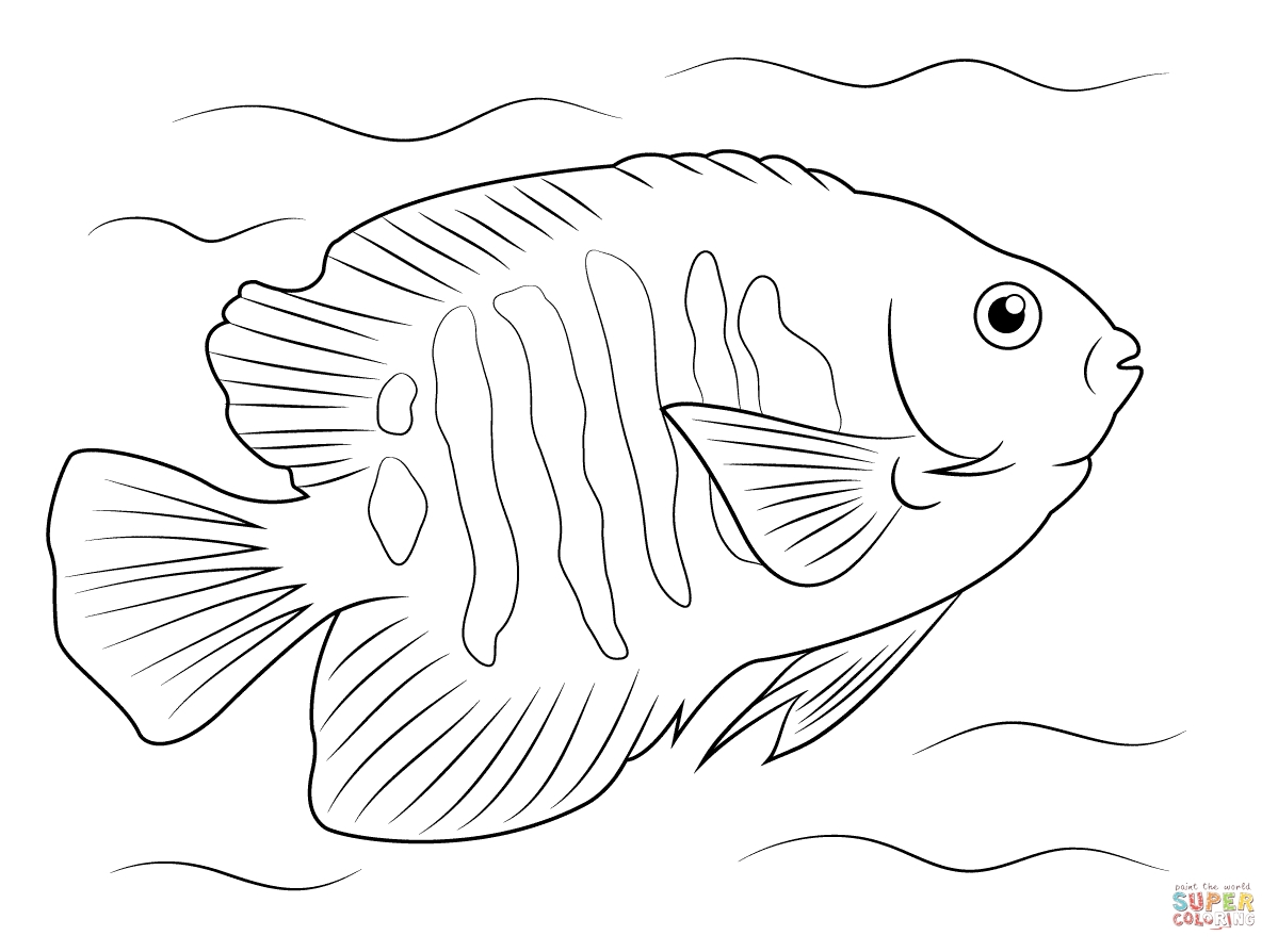 1199x894 Angel Fish Coloring Page Angel Fish Coloring Page Angel Fish