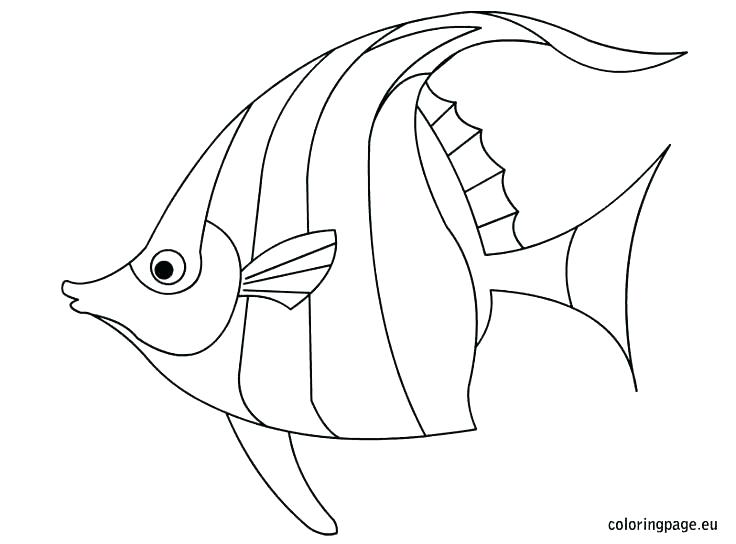 736x544 Cartoon Fish Coloring Pages