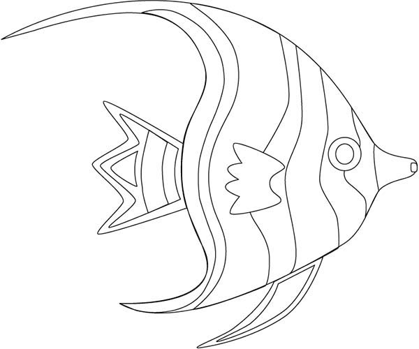 600x500 Angel Fish Outline Coloring Page Coloring Sky