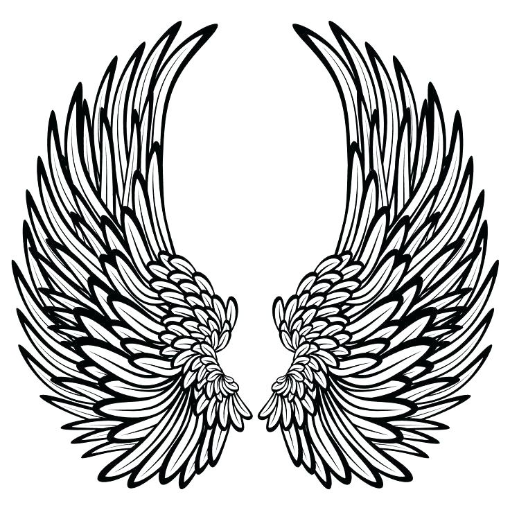 736x736 Angel Wings Pictures Color Pin Colors Wing 2 Coloring Pages Online