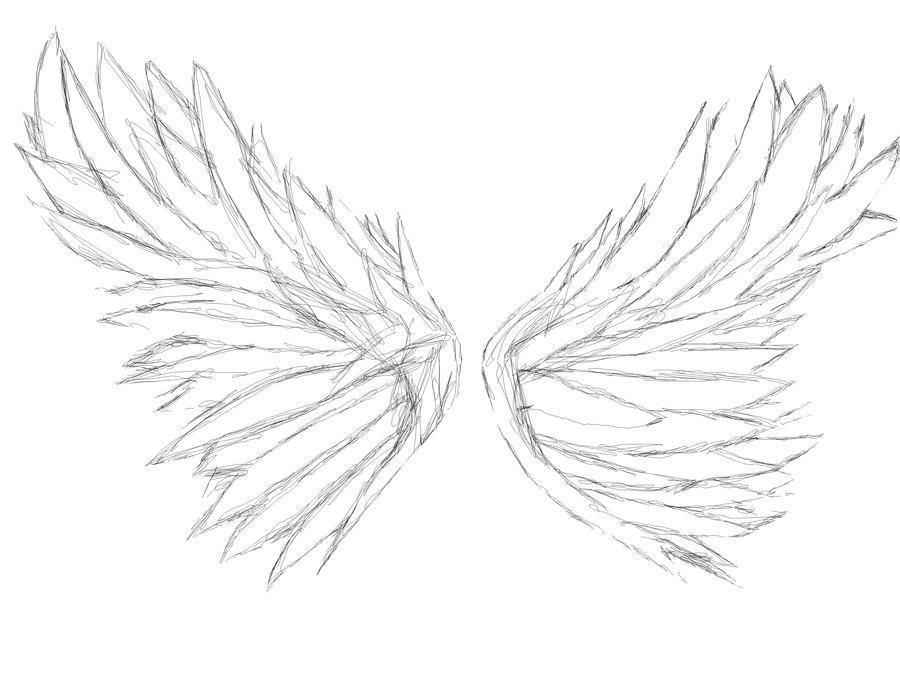 900x675 Angel Wings By Miyokonarashikamaru