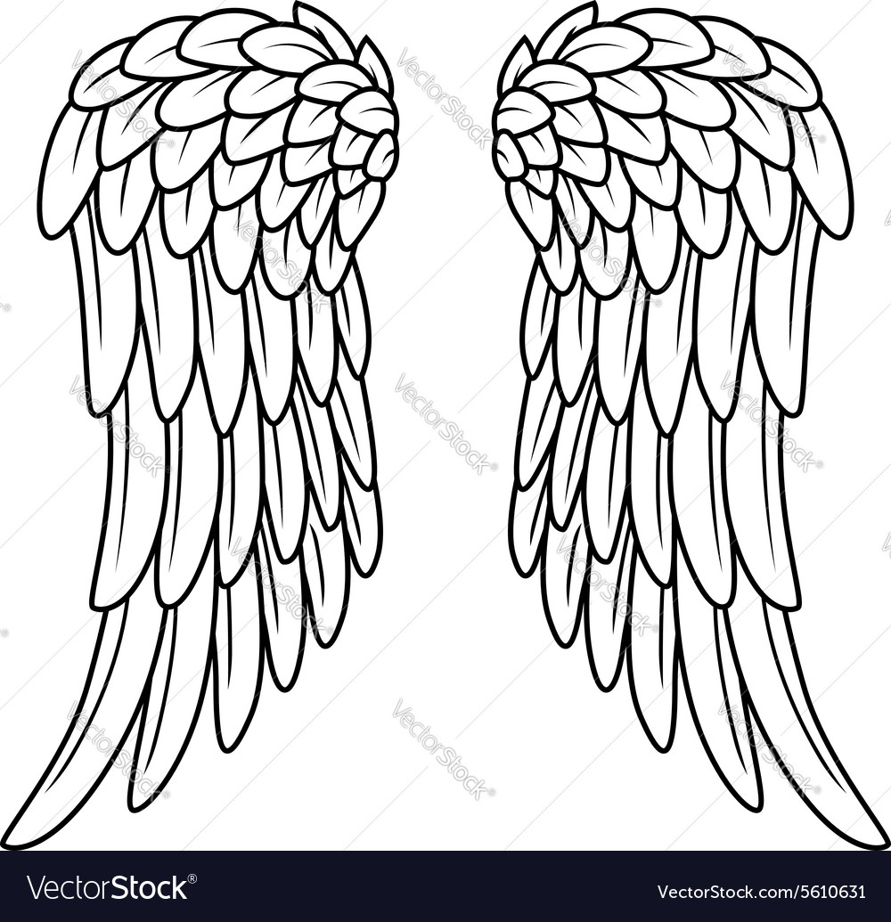 1000x1035 Angel Wing Cartoon Drawings