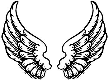 350x260 Drawings Of Angel Wings Angel Wings, Angel And Draw