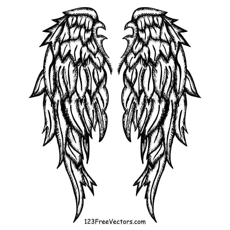 800x800 Drawn Shield Angel Wing