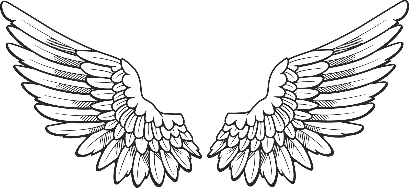 Line Drawing Wings : Angel wing drawing at getdrawings free for personal