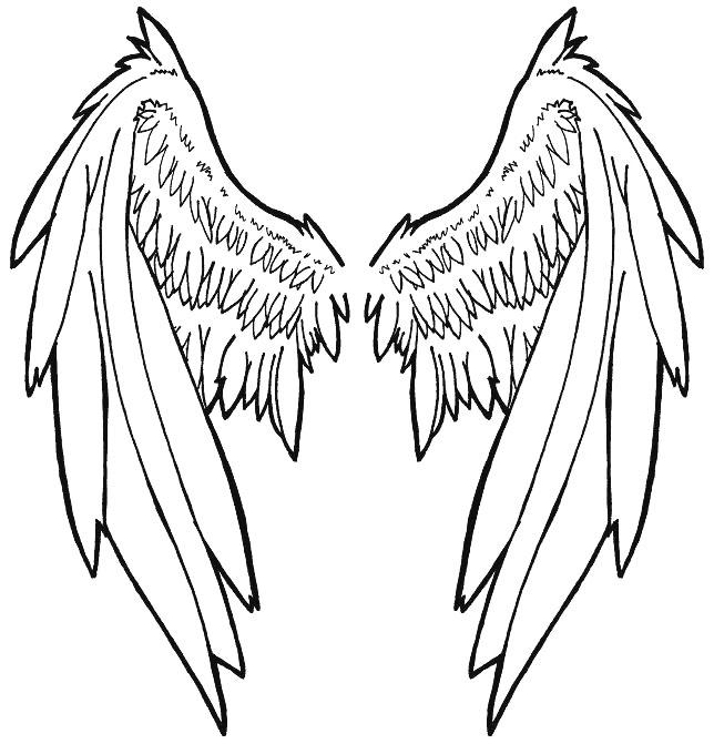 644x671 Wings By Pheonia Serafial