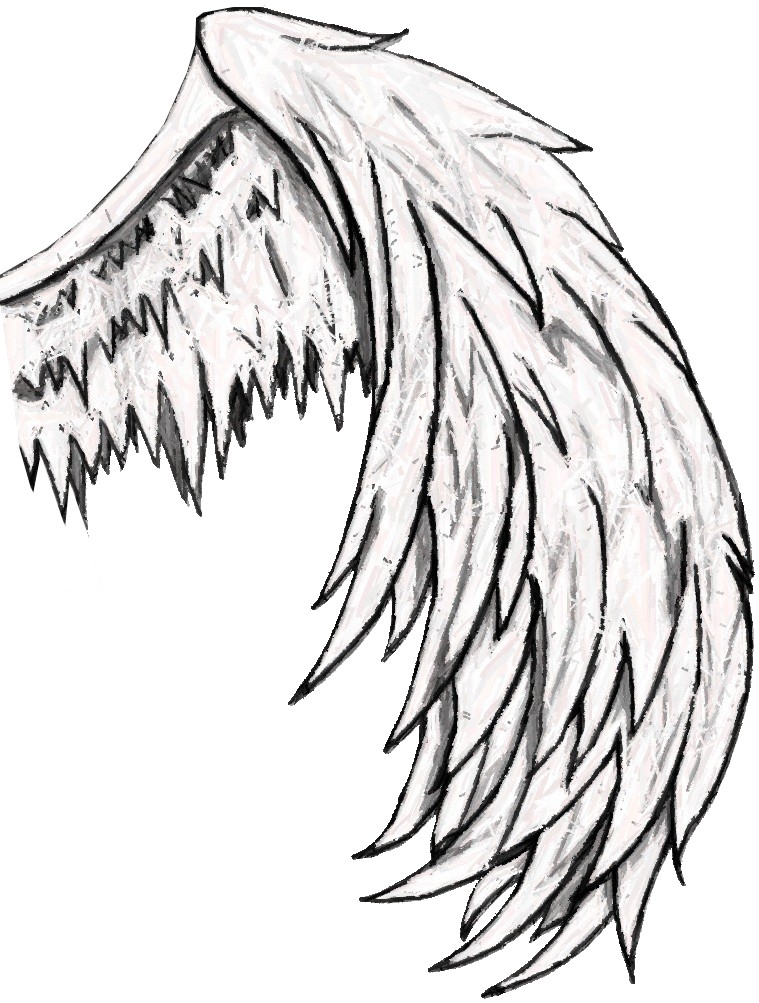759x1003 How To Draw Angel Wings