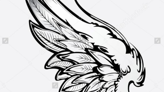 570x320 Angel Wing Drawing Eagle Wings Stock Photos Images Amp Pictures