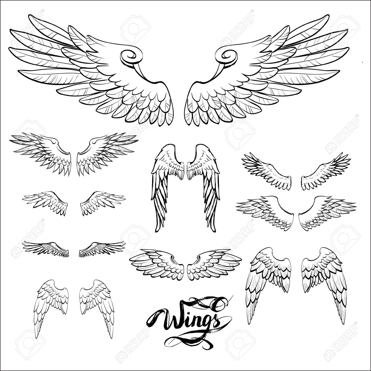 1300x1300 Angel Wings Vector, Lettering, Drawing Stock Photo, Picture