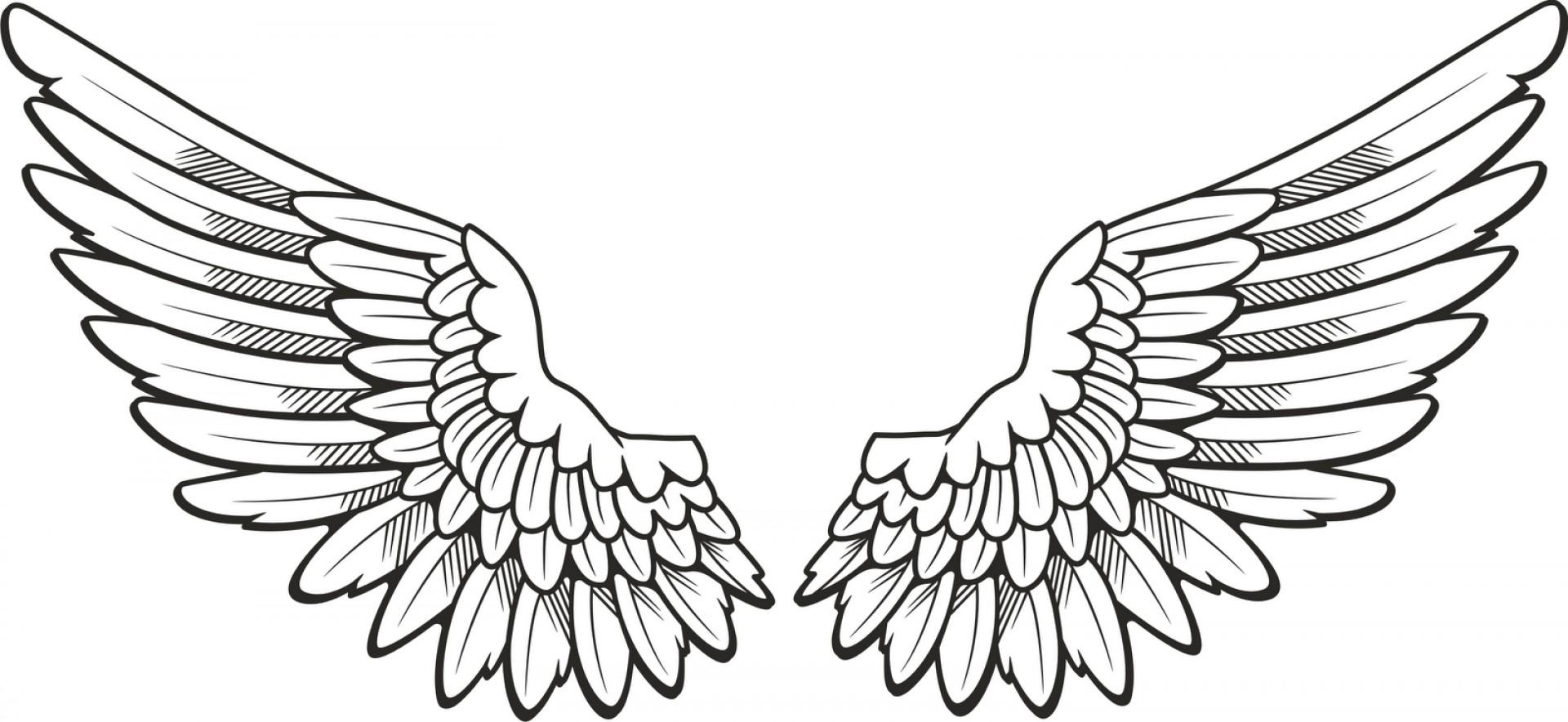 1920x884 Angel Wing Drawing
